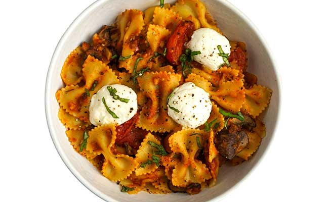 iqf-pre-cooked-bowtie-pasta